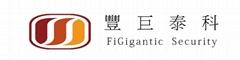 Shenzhen Figigantic Electronic CO.,LTD