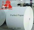 Wood pulp Ivory Paper/bristol board
