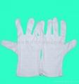 Manufacturer of cotton gloves, |