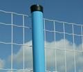 供应PVC荷兰网 3