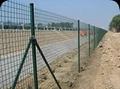 供应PVC荷兰网 4