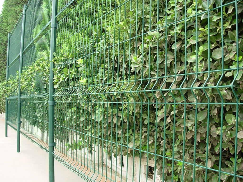 供应园林护栏网 5