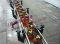 鏈板輸送機 2