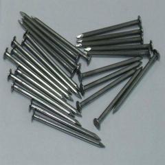 Common Iron Nails Polishing Finished