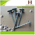 Spiral shank roofing nails(factory hot