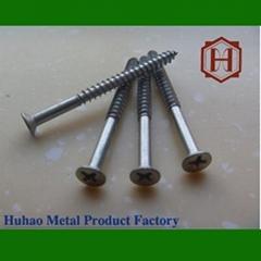 flat head - type polished wood screw