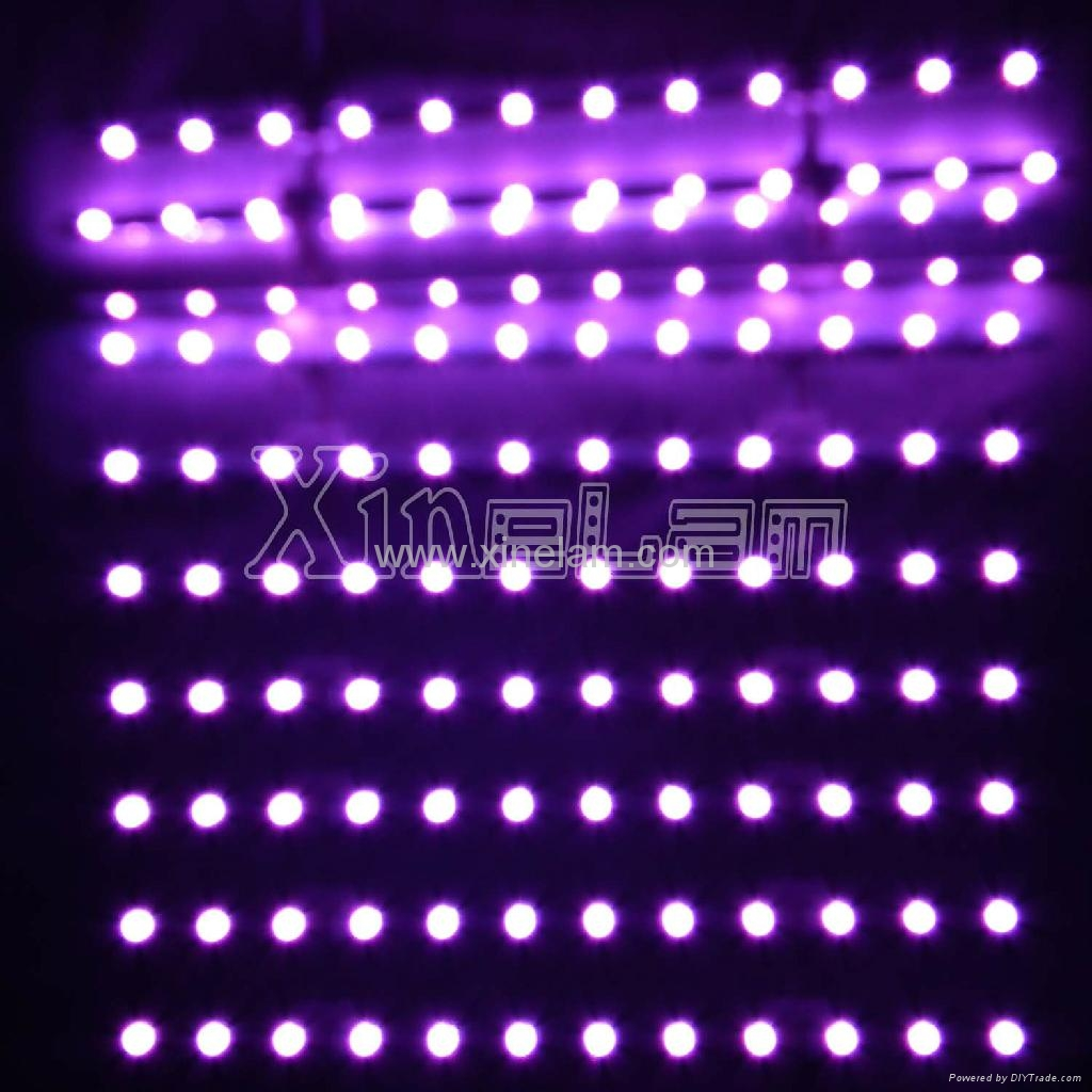 Xinelam low cost led ladder light for lightbox bkt41s 41 500 xinelam china manufacturer Led light bulbs cost