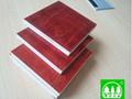 石家庄建筑模板生产 4