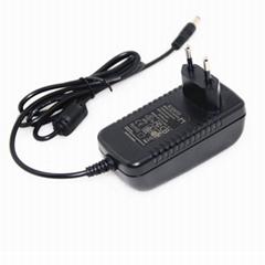 24W插墙式电源适配器 纯铜芯恒压恒流12V2A电源适配器