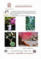 通昊牌电磁线粘结剂、漆包线漆产品一览表
