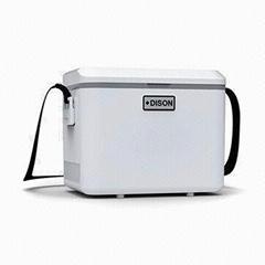 Mini Fridge Cooler Box