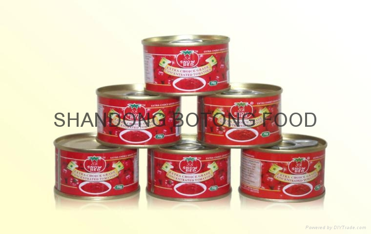 CANNED TOMATO PASTE 1