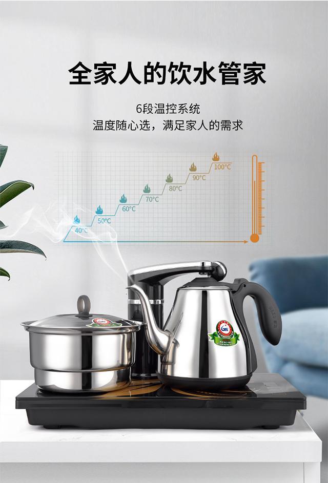 SEKO F90 One Key Automatically Electric Tea Maker 2