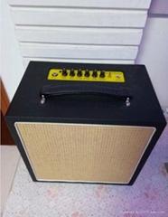 Bass Amplifier with Batt