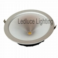 260mm diameter LED Down Light