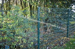 Double Wire Fence System