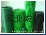 浸塑電焊網