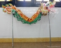 Chinese dragon dance set for 2 people