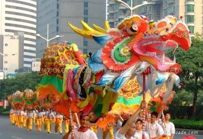 Chinese huge dragon 1
