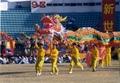 Chinese huge dragon 2