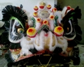 Chinese bristle lion head in different styles and colors