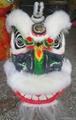White wool hok san lion