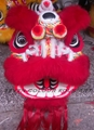 China Foshan Lion