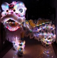 Lion head and costumes with LED lights 2