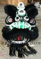 Beautiful black lion head