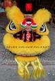 New pattern Hoksan lions