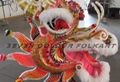 Chinese Southern Dragon head