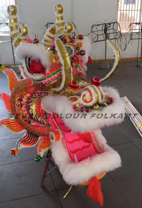 Chinese Southern Dragon head 2
