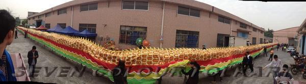 Chinese Guangdong huge dragon 2