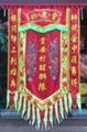 Printed lion team banner 18