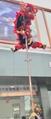 High pole for lion dance 6