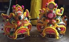 Chinese unicorns