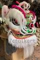 Fut Hok Lions