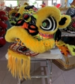 Futsan style lion heads with wool in different colors 11