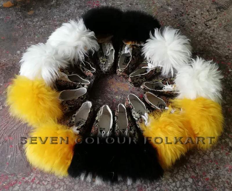 Lion shoes 1
