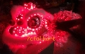 Red LED Lion