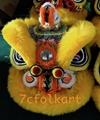 Gold-yellow sheep fur hoksan style lion heads 5