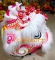 Beautiful pink base white ram fur lion head