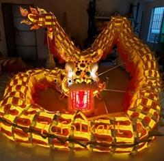 LED DRAGON with lights inside dragon body