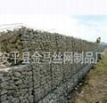石笼网 防护网 2