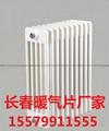 長春翅片管散熱器 2