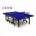 舟山乒乓球桌 2