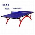 舟山乒乓球桌 3