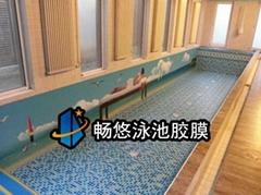 畅悠别墅泳池专用胶膜