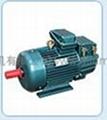YZR冶金起重电机 1