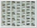 Polyester Dryer Screen  5